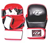Best mma gloves - LEW Leather Grappling Training MMA Gloves Review