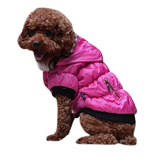 aisuper Chihuahua Mops Bulldogge Fell Hoody Jacken Mantel für kleine medium Hunde Haustiere Katzen Winter Warm, solide Taste Parka Jumper 12(Größe Optional xs-2X L