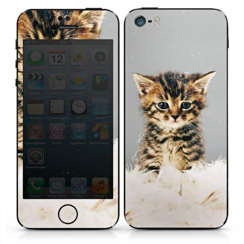 Apple iPhone SE Case Skin Sticker aus Vinyl-Folie Aufkleber Baby Katze Kitty Cat DesignSkins® glänzend