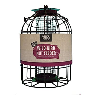 Kingfisher BF007 Squirrel Guard Bird Feeders from Bonnington Plastics