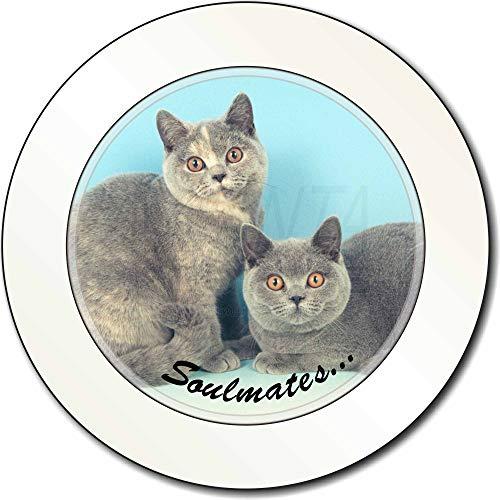 Advanta - Tax Disc Holders Britische blau-Creme Cats ' Soulmates AutovignetteGenehmigungsinhaber Geschenk -