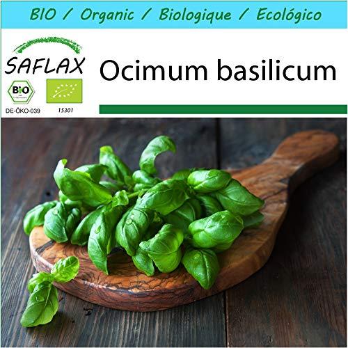 SAFLAX - Geschenk Set - BIO - Basilikum Sweet Genovese - 800 Samen - Mit Geschenk- / Versandbox, Versandaufkleber, Geschenkkarte und Anzuchtsubstrat - Ocimum basilicum