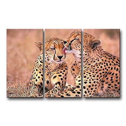 3panneau mural art Photo d'Afrique du Sud guépards Couple en