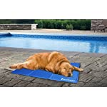 Lauva Dog Cool Mat, Dogs Self Cooling Non-Toxic Gel Mat Pads Mattress Pet Cat Cool Beds Extra Large for Dog Crates… 12