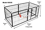 Dog Fences Review and Comparison