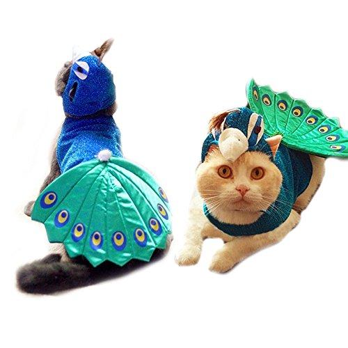 Halloween Pfau Hund Katze Kostüm Outfits mit Katze hat Funny Kleine Haustiere Hund Katze Party Kleidung Kleidung