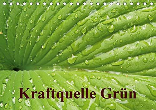 ischkalender 2020 DIN A5 quer): Grün ist die Farbe der Hoffnung, deshalb wird das junge Frühlingsgrün auch immer besonders ... (Monatskalender, 14 Seiten ) (CALVENDO Natur) ()