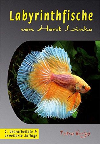 Labyrinthfische (Bücher Grenzen)