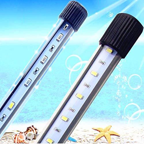 CanKun Led Aquarium Beleuchtung Pflanzen Lichter Aquarien Meerwasser Led Lampe Blue White Light Für Nano Fisch Riff Growth,Weiß,34cm -