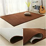 GLP Fußmatte-Nicht Beleg-Teppich für Eingangs- / Leben- / Schlafzimmer-Innenwolldecke, saugfähige schnell trocknende Auflage, Mischungs-Fuß- / Fußmatten, 9 Farben (Size : 200 * 300cm)