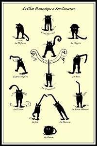 Le Chat Domestique (Le Chat Domestique et son caractère) Fine Art Deco Vintage Poster Encadré 24 x 36 cm