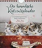 Der himmlische Katzenkalender 2020: 52 Samtpfotengeschichten, Bilder & Weisheiten - Heike Wendler