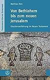 Von Bethlehem bis zum neuen Jerusalem: Glaubenserfahrung im Neuen Testament (Theologie für die Gemeinde (ThG), Band 2) - Matthias Rein