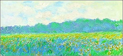 'Monet