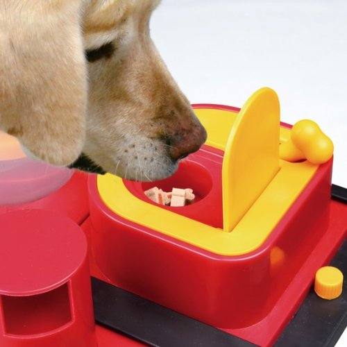 Trixie Dog Activity Poker Box 2 Strategiespiel, 31x31cm - 3