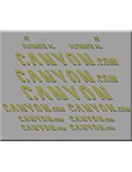 PEGATINAS CANYON ULTIMATE R291 VINILO ADESIVI DECAL AUFKLEBER КЛЕЙ MTB STICKERS BIKE (ORO)