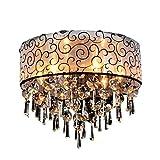 Leuchte Moderne Kristalldeckenleuchten für Wohnzimmer Luminarias Para Sala Plafon führten Kristalldecken-Lampen-Befestigungen für Schlafzimmer (größe : 40 cm)
