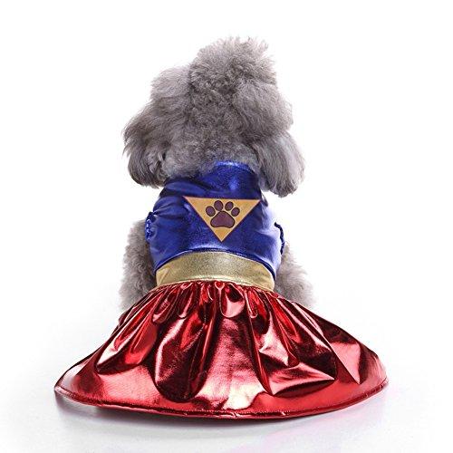 Blaward Haustier Kostüm Partei Kleider Kleidung für Hundewelpen verkleiden Sich Einteilige Superhundestil für ()