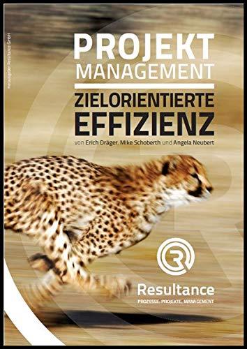 Projektmanagement Zielorientierte Effizienz: Im Sprint zum Level D ICB 4.0