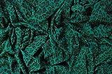 Brunswick Mills - Tela elástica (98% algodón, 2% Elastano, 167,64 cm de Ancho)