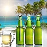 Bier Flaschen Kühler-1PC Bier Kühler Stöcke, Kühlende Stöcke des rostfreien Stahls Bestes Bier Werkzeug Männer Beer Chiller Stick Bier Flaschenkühler Getränkekühler sunshineBoby (Silber)