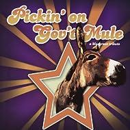Pickin' On Gov't Mule: A Bluegrass Tribute