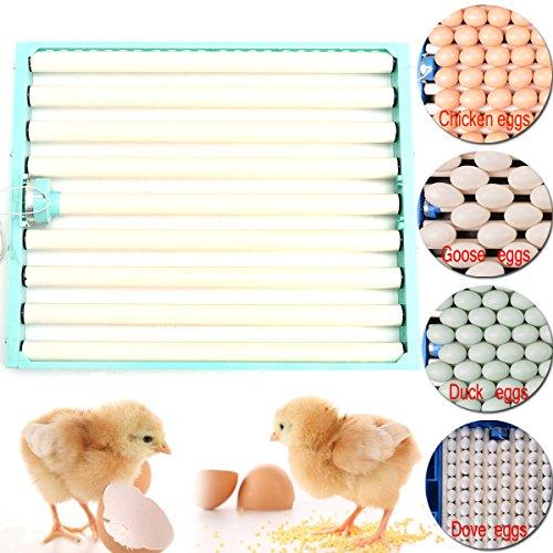 ChaRLes 220V Chicken Eggs Inkubator Automatic Duck Quail Geflügel Ei-Inkubator-Tray