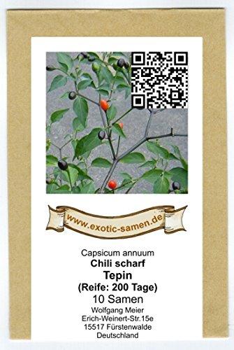 Eine Urform der Chilis - bis zu 300.000 Scovilles - Tepin Chili - Chiltepin - 10 Samen