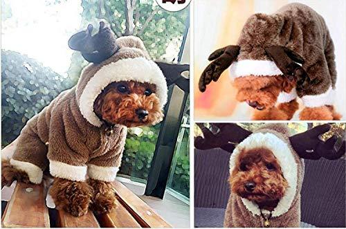 Unbekannt ML Teddy Hund 鈥 嬧 € 婥 Lothes als der Bär Vier Fuß verwandelte Sich in einen kleinen Hund Frei Art Katzen-Haustier-Elch-Kostüm, (Bären Füße Kostüm)