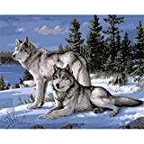 shukqueen DIY Ölgemälde, Erwachsene 's Malen nach Zahlen Kits, Acryl painting-wolf im Schnee 40,6x 50,8cm, Frameless,Just Canvas