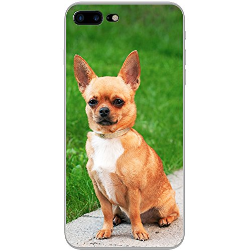 chihuahua-mexicana-taco-bell-perro-duro-caso-para-telefonos-moviles-plastico-diamond-collar-dog-in-p