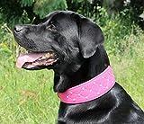 Lederhalsband Elena Buffalo Leder Halsband Rosa Pink Strass BREIT Mittel - Große Hunde Mädchen Halsband S M L XL Tysons Breeches (L)