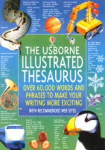 The Usborne Illustrated Thesaurus (Usborne Illustrated Dictionaries) by Jane M. Bingham (2001-06-29)