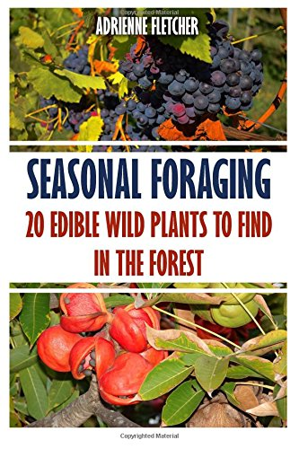 Seasonal Foraging: 20 Edible Wild Plants to Find In The Forest -