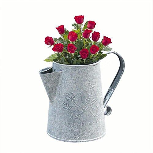 Brownrolly Shabby Fass Gießkanne Pflanzgefäße Blumentöpfe Metall Krug Blumenvase mit Griff Blumengestecke Halter für Hochzeit Zuhause Bar Dekoration a Bar Krug