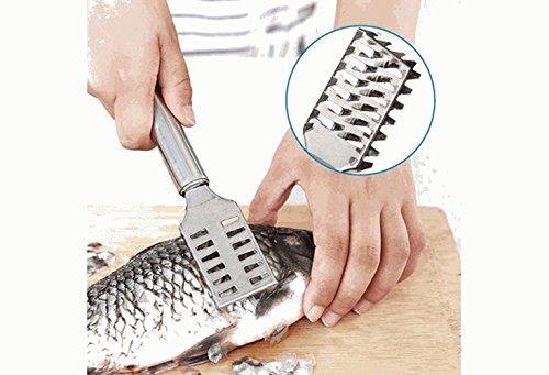 LQZ Fischschuppenentferner aus Edelstahl Fischentschupper Fisch schuppen Schaber