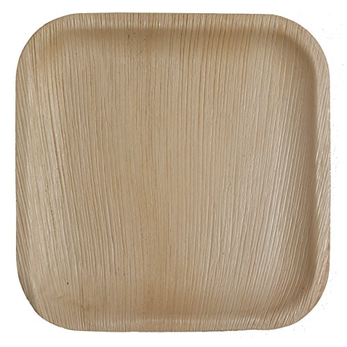 Table To Go 50-Piece Palm Leaf Square Dinner Plates, 10-Inch