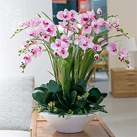 Fiori Artificiali Set per Hotel matrimonio decorazioni FESTE in casa?Emulazione Fiore Vaso Phalaenopsis Boutonniere Set, chipset, colore: rosa