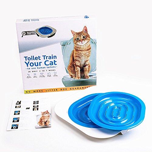 Aoxsen kit WC in PET gatto gattino gatti sella Trainer lettiera, adatto per tutti i servizi igienici per gatti, a partire dai 3mesi di età, treno il gatto ad usare il WC