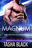 Magnum: Stargazer Alien Mail Order Brides #3 (Intergalactic Dating Agency)