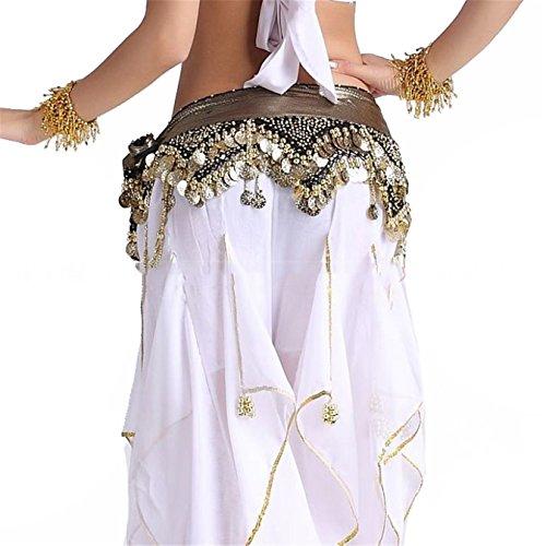 Dance Accessories Lndian Egypt Dance Danse du ventre costume Hip écharpe jupe 2 Rangées Coins Black