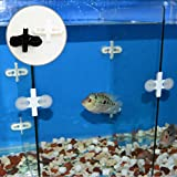 Kunststoff-Trennwand Blatt, 5Stück Aquarium Fisch Tank Trennwand Kunststoff, Saugnapf, Schwarz mit Halterung 5 Stück Schwarz