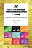 Cao da Serra de Aires 20 Milestone Challenges: Tricks & Training Cao da Serra de Aires Milestones for Tricks, Socialization, Agility & Training Volume