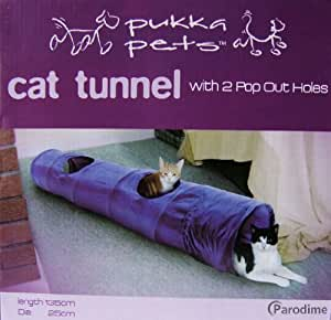 Cat Tunnel with 2 Pop Out Holes