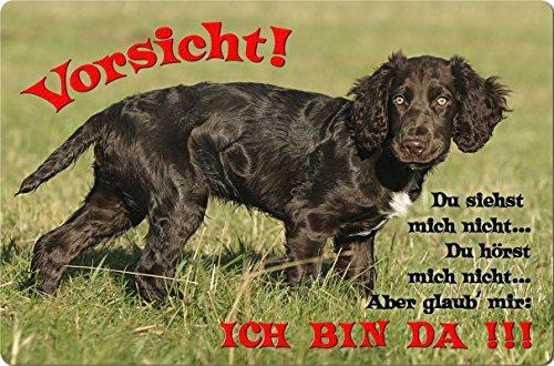 +++ Deutscher WACHTELHUND - Metall WARNSCHILD Schild Hundeschild Sign - DWH 02 T2