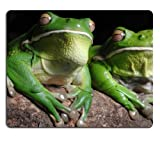 Green Toads frogs Amphibians animals Mouse Pads Customized Made to Order Support Ready 9 7/8 Inch (250mm) X 7 7/8 Inch (200mm) X 1/16 Inch (2mm) High Quality Eco Friendly Cloth with Neoprene Rubber Liil Mouse Pad Desktop Mousepad Laptop Mousepads Comfortable Computer Mouse Mat Cute Gaming Mouse pad
