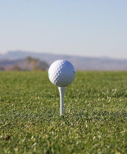 história do golfe:: Golf livros de golfe: Tudo o que você precisa saber (Portuguese Edition) por Dale Waller