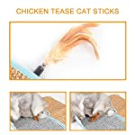 Aolvo Cat Scratcher, Double Sided Natural Tanzania Sisal Cat Scratching Mat Pad Cardboard, Soft and Unbroken, Interactive Cat Scratch Mat Scratcher Replacement with 2 Cat Feather Teaser Toy 14