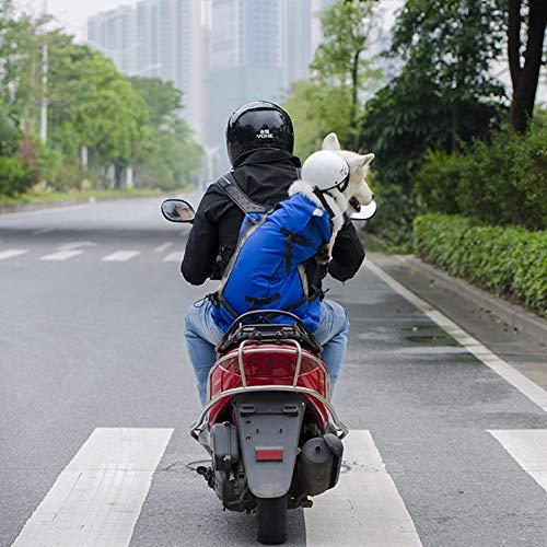 XDYFF Pet Rucksack Transportbox atmungsaktives Pet doppelte Schulter Passagier Rucksack Hund im Freien-Beutel belüftet und atmungsaktiv Fahrrad Outdoor-Shopping-Rucksack,Blue,XL