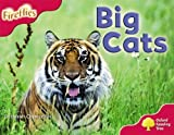 Oxford Reading Tree: Level 4: More Fireflies A: Big Cats by Deborah Chancellor (2008-09-04)